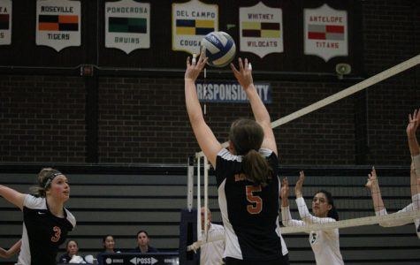 VOLLEYBALL: Tigers defeat Honkers in first round of playoffs