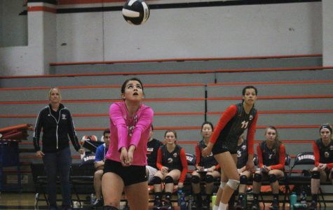 VOLLEYBALL: After loss, Tigers' playoff chances uncertain