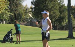 GOLF: Tigers repeat as divisional champs