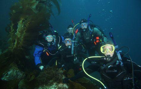 Brothers deepen their bond through scuba diving