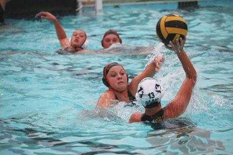 Youth step up to lead polo team