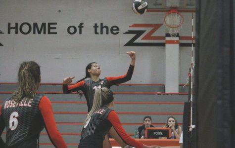 DEPORTES: Los equipos de voleibol en Roseville High School han tenido éxito