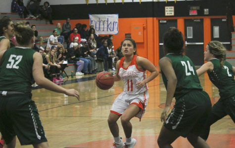 BASKETBALL: Experienced, dynamic girls varsity team shoots for title
