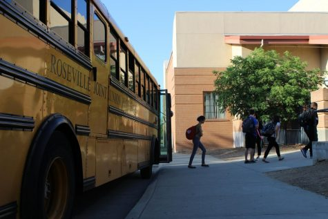 EYE OF THE TIGER'S VIEW: New pathways unhook schedules