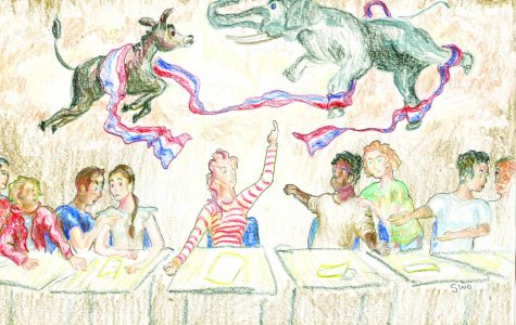 EYE OF THE TIGER'S VIEW: Teacher political commentary dilutes learning