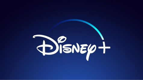 Disney+ streaming service incoming